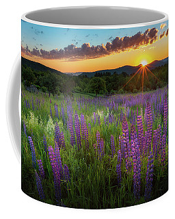 Coffee Mug featuring the photograph Lupine Lumination by Bill Wakeley