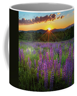 Lupine Lumination Square Coffee Mug