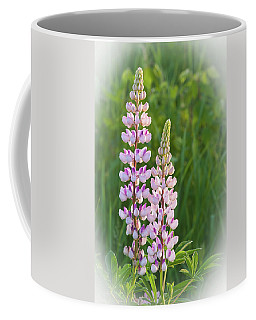 Lupine Pair Coffee Mug
