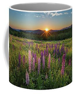 Lupine Sunrise Coffee Mug