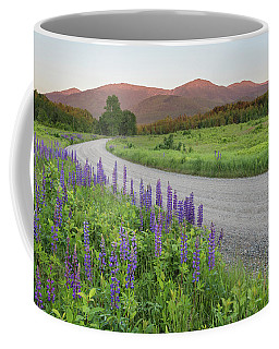 Lupine Sunset Road Coffee Mug