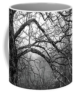 Coffee Mug featuring the photograph Lure Of Mystery by Karen Wiles
