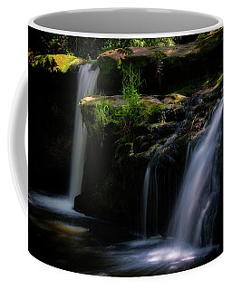 Lynn Mill Waterfalls Coffee Mug