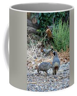 Quail Coffee Mugs | Fine Art America