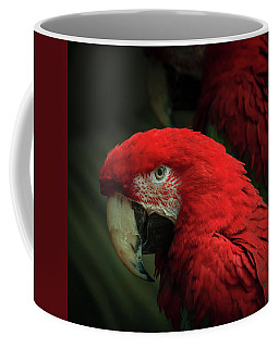 Macaw Portrait Coffee Mug
