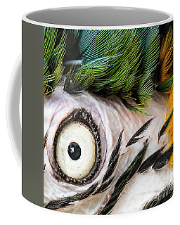 Macaw Up Close And Personal Coffee Mug