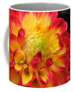 Macro Dahlia Coffee Mug