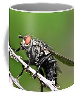 Macro Fly Coffee Mug