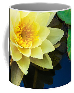 Macro Image Of Yellow Water Lilly Coffee Mug