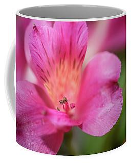 Macro Of Flower Coffee Mug