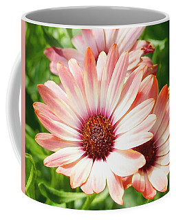 Macro Pink Cinnamon Tradewind Flower In The Garden Coffee Mug