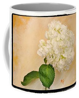 Macro White Hydrangea Coffee Mug