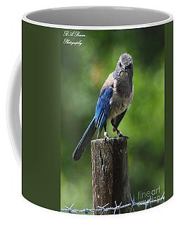 Mad Bird Coffee Mug