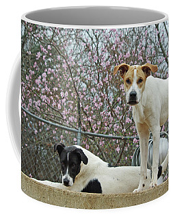 Maddy And Sammy Springtime Coffee Mug