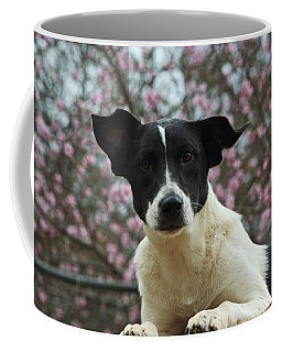 Madison In Spring Coffee Mug