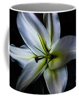 Madonna Coffee Mug