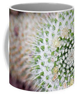 Madrid Botanical Garden 1 Coffee Mug