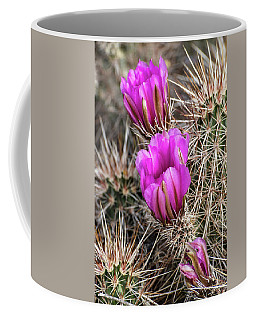 Magenta Cactus Flowers Coffee Mug