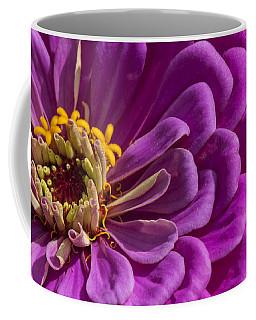 Magenta Zinnia Coffee Mug