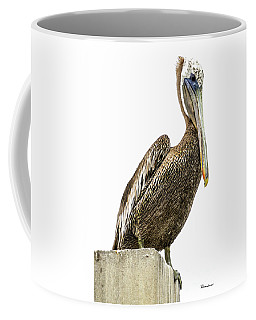 Majestic Gulf Shores Pelican 1071a Coffee Mug