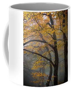 Magical Forest Blue Ridge Parkway Coffee Mug
