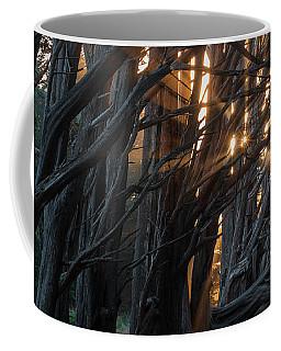 Magical Morning Light Coffee Mug