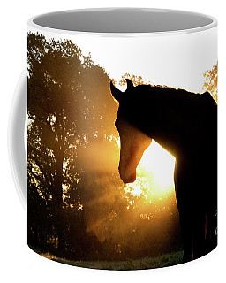 Magical Sunrise Coffee Mug