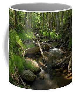 Magical Surroundings Coffee Mug by Sue Cullumber