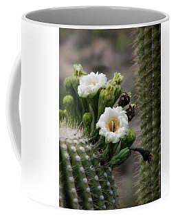 Magnificant Bloom Of The Saguaro Coffee Mug