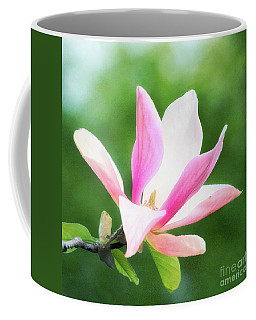 Magnificent Daybreak Magnolia At Day's End Coffee Mug