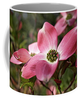 Coffee Mug featuring the photograph Magnificent Dogwood Flower by Michele Myers