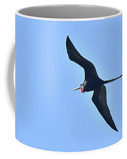Magnificent Frigatebird Coffee Mug