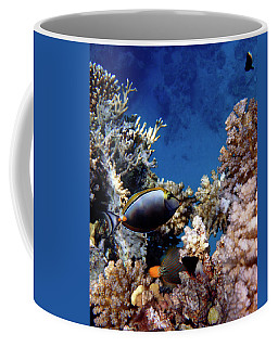 Magnificent Red Sea World Coffee Mug