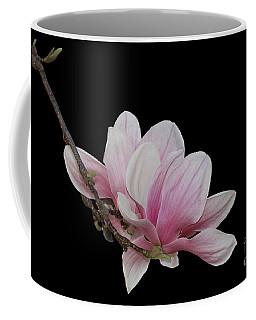 Magnolia #2 Coffee Mug