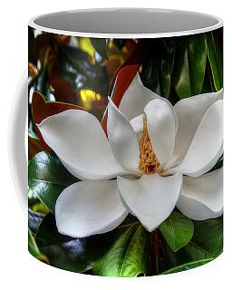 Magnolia Bloom Coffee Mug by Ronda Ryan