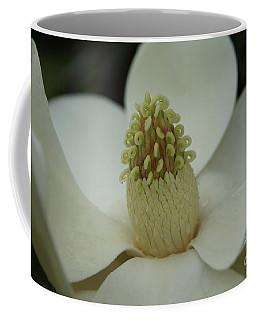 Magnolia Blossom 4 Coffee Mug