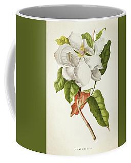 Magnolia Botanical Print Coffee Mug