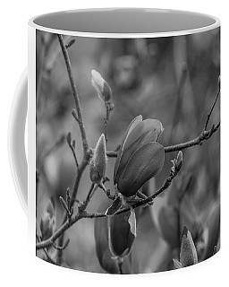 Magnolia Bw Blooms Buds Branches Coffee Mug