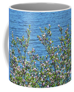 Coffee Mug featuring the photograph Magnolia Flowering Tree Blue Water by Rockin Docks Deluxephotos