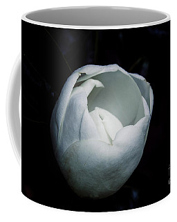 Magnolia In The Spotlight Coffee Mug