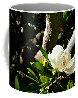 Magnolia Nest Coffee Mug