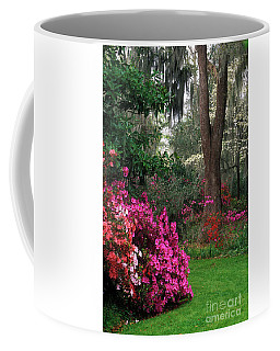 Magnolia Plantation - Fs000148a Coffee Mug