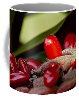 Magnolia Seeds Coffee Mug