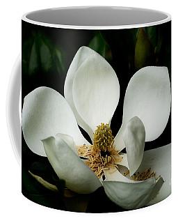 Magnolia Time Coffee Mug