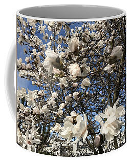 Coffee Mug featuring the photograph Magnolia Tree In Blossom by Patricia Hofmeester
