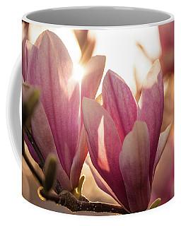 Magnolias At Sunset Coffee Mug