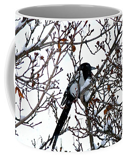 Coffee Mug featuring the photograph Magpie In A Snowstorm by Will Borden