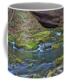 Maiden Springs Coffee Mug