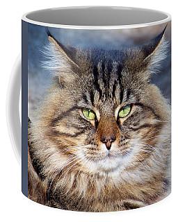 Maine Coon I Coffee Mug