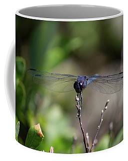 Maine Dragonfly Coffee Mug